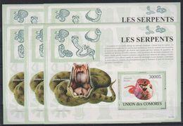 M325. 5x Comores - MNH - Animals - Reptiles - Snakes - 2009 - Bl. - Francobolli