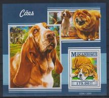 K720. Mozambique - MNH - 2015 - Nature - Animals - Dogs - Bl. - Pflanzen Und Botanik