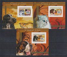 J719. Guinea - MNH - Animals - Dogs - Cats - Deluxe - Imperf - Briefmarken