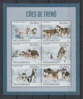 I324. Mozambique - MNH - 2013 - Fauna - Animals - Pets - Sleigh Dogs - Pflanzen Und Botanik