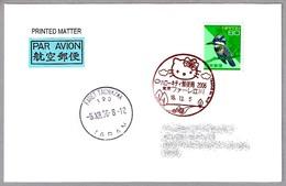 HELLO KITTY. Faret Tachikawa, Japon, 2006 - Otros