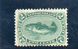 TERRE-NUEVE 1866-71 SANS GOMME - Newfoundland