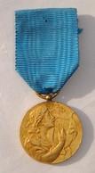 Médaille Fédration Musicale Rhône & Sud-Est - Non Attribuée - Quelques Traces, Dans L'état - Non Classés