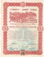 Titre Ancien - Compañia De Las Minas De Oro Y Plata - La Preciosa - Titre De 1909 - N° 46614 - Mines