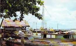 SURINAM Suriname - Stadsgezicht PARAMARIBO - CPSM Format CPA - Zuid Amerika South América Sudamerica Amérique Sud - Surinam