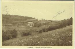 Oignies. Les Aises Et Route De Revin - Viroinval