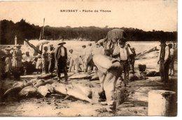 Sausset: Pêche De Thons - Autres Communes