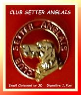 SUPER PIN'S CHIEN : CLUB SETTER ANGLAIS En émai Cloisonné 3D Base Or, Diamètre 1,7cm - Animals