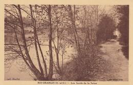 RIS-ORANGIS - Les Bords De La Seine - Ris Orangis