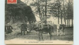 14* NORMANDIE  Vacheres - France