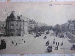 BRUXELLES Brussel : Avenue Louise Louisalaan - Non Classés