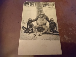 Cpa Congo Chimpanzé Féminin - Cartes Postales