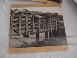 Belle Photo Ancienne Bassin D'Arcachon Collecteurs D'huitres - Lieux