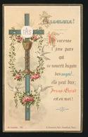 PLECHTIGE EERSTE COMMUNIE  DE VALENTINE DEN DUYTS  ST.MICHEL A GAND 1884   2 SCANS - Images Religieuses