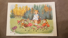 "OLD USSR Postcard  - ""KARAVAY"" By Sazonova -   Champignon  - MUSHROOM 1960 Rare! - Champignons"
