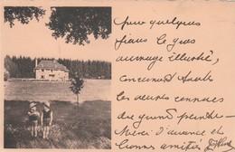 LIBRAMONT CHALET DU DOMAINE DE LUCHY - Libramont-Chevigny