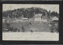 AK 0385  Friedrich Schüler Alpenhaus Am Sonnwendstein ( Göstritz ) - Verlag Ledermann Um 1901 - Semmering