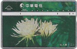 Taiwan - Chunghwa Telecom - L&G - Cactus 2 - 906A - 1999, 100U, Used - Taiwán (Formosa)