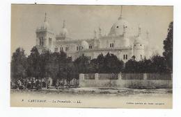 CPA - Tunisie - Carthage - La Primatiale - Túnez
