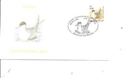 Oiseaux - Buzin - Sterne ( FDC De Belgique De 2001 à Voir) - Oiseaux