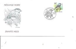 Oiseaux - Buzin - Mésange Noire ( FDC De Belgique De 1999 à Voir) - Unclassified