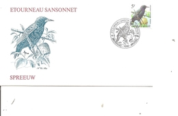 Oiseaux - Buzin - Etouneau Sansonnet ( FDC De Belgique De 1996 à Voir) - Oiseaux
