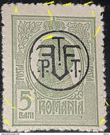 Errors  Romania 1918 King Charles I, 5bani Green ,with Printed Line Horizontal Interior Frame Oval - Variedades Y Curiosidades