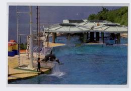 Dolphinarium De Hong Kong - Cina (Hong Kong)