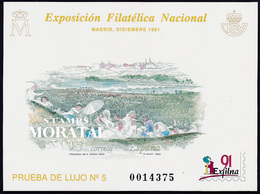 1991 Spain  Sc 0 PO Exfilna'91  **MNH Very Nice, Mint Hever Hinged  (Scott) - Hojas Conmemorativas