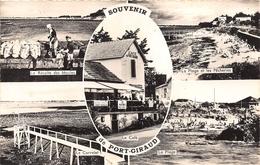 ¤¤  -  LA PLAINE-sur-MER  -  Souvenir De PORT-GIRAUD   -  Multivues   -   ¤¤ - La-Plaine-sur-Mer