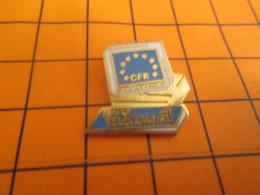 1210 PINS PIN'S / Beau Et Rare : Thème FRANCE TELECOM / CFR STRASBOURG MICRO ORDINATEUR - Telecom De Francia