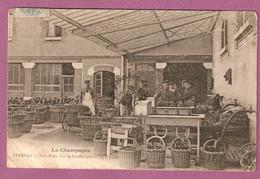 Cpa La Champagne - Epernay Travail Du Vin De Champagne Le Rincage - Epernay