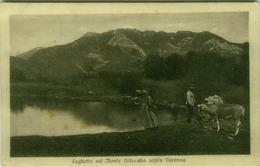 LAGHETTO SUL MONTE ORTANELLA SOPRA VARENNA ( LECCO ) EDIZ. ADAMOLI 1920s ( 3788 ) - Lecco