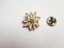 Superbe Pin's En Relief ,  Fleur Edelweiss , Nature - Pin's