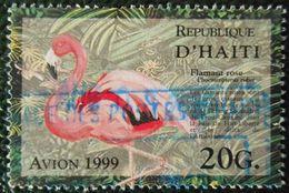 54 Haïti Flament Rose - Oiseaux