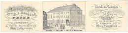 Dépliant Pub Hôtel De Trèver à Trèves /  Hotel Of Triers By A.J. Recking / Diligences Pour Metz & Luxembourg - Pubblicitari