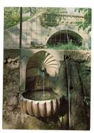 ANDUZE (30) - La Coquille Du Parc Des Cordeliers Et Ses Bambous Géants - Anduze