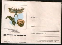 Russia USSR Cover Fauna, Potato Moth - A Dangerous Pest !  Chisinau (Moldova) - Schmetterlinge