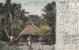 Mexique - Mexico - Estado De Vercruz - Cabana - 1905 - Messico