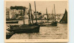 29* AUDIERNE   Port - Audierne