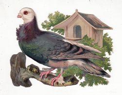 Chromo Découpi   Oiseau Sur Une Branche     GRAND FORMAT     13.9 X 10.8 Cm - Other