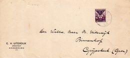 1928 Enkelfrankering NVPH 167 Op Envelop  Van Hoogezand Naar Grijpskerk - Lettres & Documents