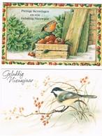 2 Cartes Oiseau - Birds- Vogels - Vogels