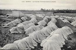 Algérie )  BISKRA  - La Grande Prière Troisième Phase - Biskra