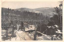PHOTO 1914/1918  HARTMANNSWILLERKOPF ? SUNGAU - 1 - Frankrijk