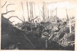 PHOTO 1914/1918  Environs Du HARTMANNSWILLERKOPF ? SUNGAU - 8 - Frankreich