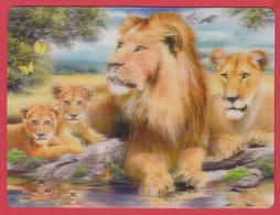 CPM * 3D Couleur * Effet STEREOSCOPIQUE *LIONS By The Pool * Howard Robinson * Cf.  SCANN * - Oiseaux