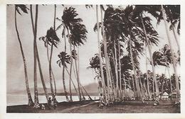 Samoa )   SAMOA  - Un Orage Sur Samoa - Samoa Americana