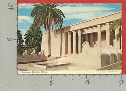 CARTOLINA VG STATI UNITI - SAN JOSE - Rosicrucian Egyptian Museum - CALIFORNIA - 10 X 15 - 1976 - San Jose