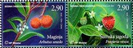 Bosnia & Herzegovina - Mostar - 2019 - Berries - Maggie And Wild Strawberry - Mint Stamp Set - Bosnia Herzegovina
